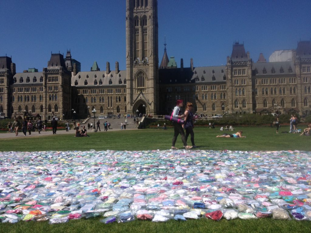 6800 baby booties on the lawn of Parliament Hill.
