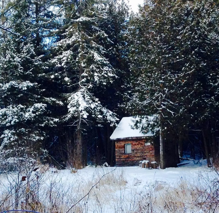 A small cabin in the woods.